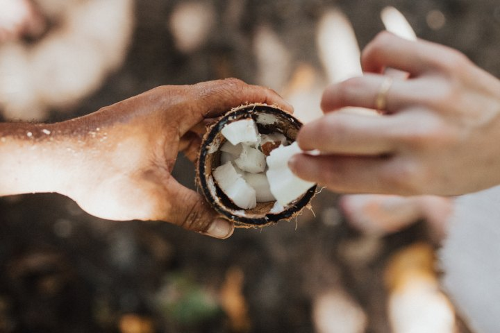 Aceite de coco: ¿producto milagroso o venenopuro?